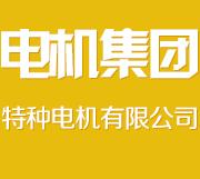 沈阳电机集团特种电机有限公司